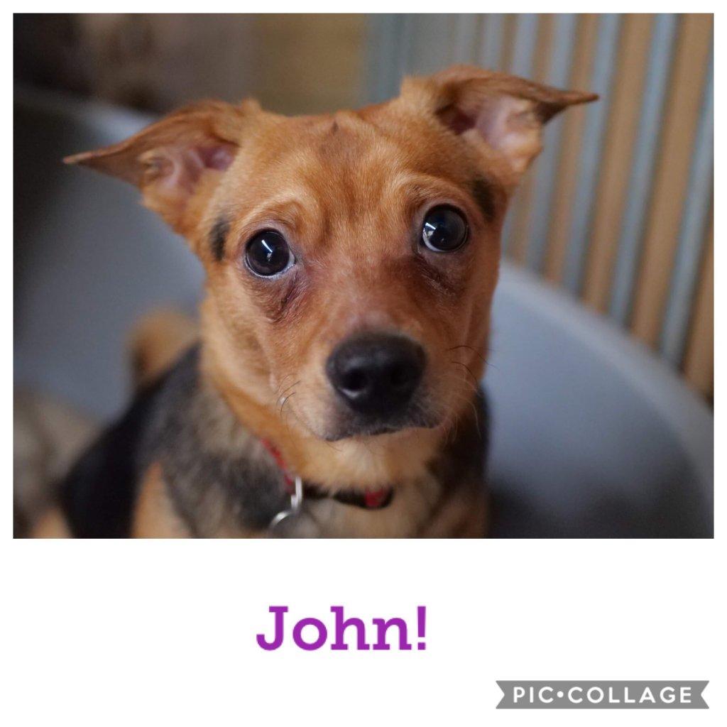 John-profile